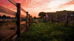 Sunset Over Grayslake Farm